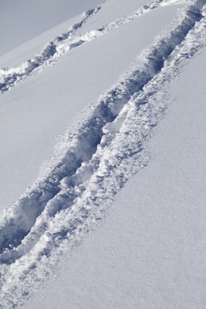 offpiste: Background of off-piste ski slope with new-fallen snow at nice sun day