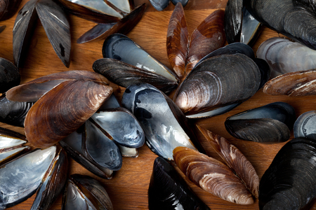 saltwater pearl: Shells of mussels on wooden kitchen board