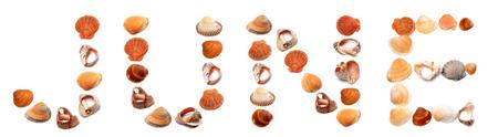 e u: J U N E text composed of seashells. Isolated on white background.
