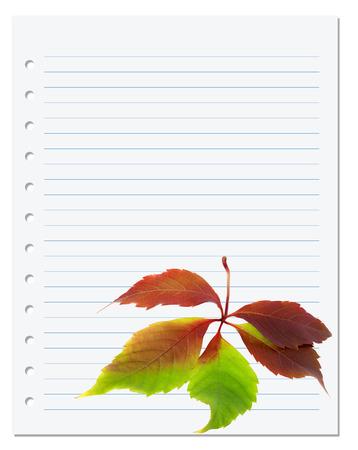 college ruled: Exercise book with multicolor virginia creeper leaf (Parthenocissus quinquefolia foliage). Back to school background