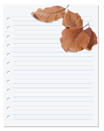 college ruled: Notebook paper with autumn virginia creeper leaf (Parthenocissus quinquefolia foliage). Back to school background