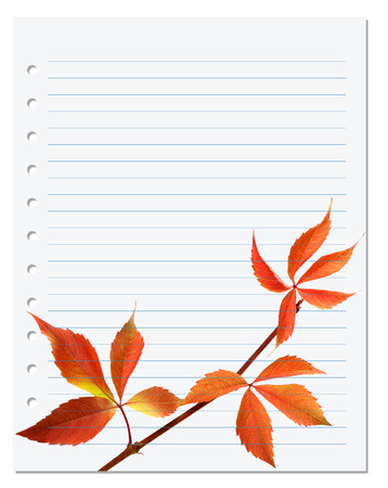 college ruled: Exercise book with autumnal virginia creeper leaf (Parthenocissus quinquefolia foliage). Back to school background Stock Photo