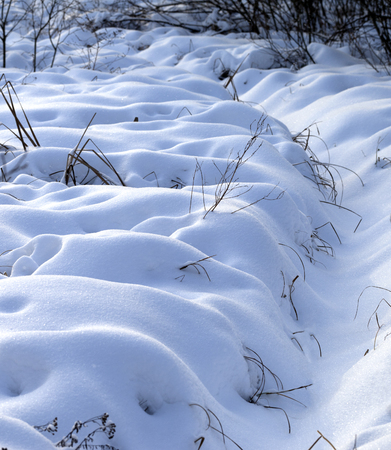 snowbound: Snowbound winter meadow after snowfall at evening Stock Photo