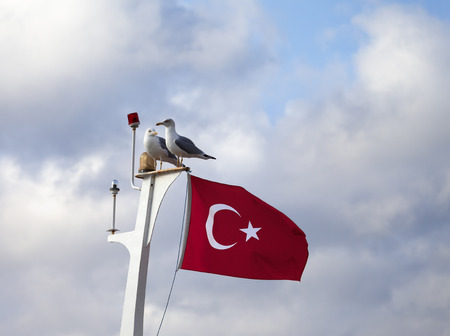 Two seagull and Turkish flag on boat mast at sun cloudy day