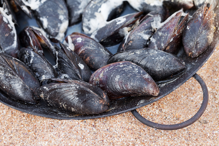 Freshly cooked mussels in metal tray on sand beach at sun summer day