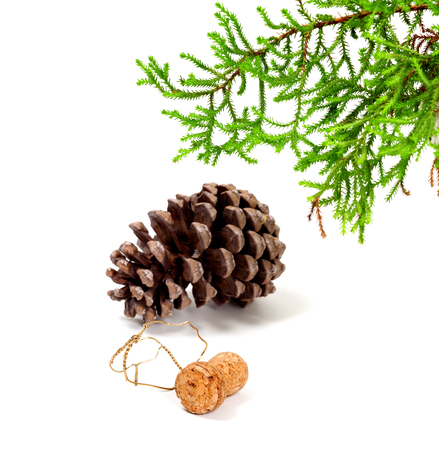 Branch of decorative home Christmas-tree, big pine cone and champagne wine cork with muselet. After New Year celebration. Isolated on white background.