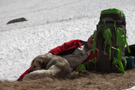 Hiker with big backpack and dog resting near snowy glacier at high mountains