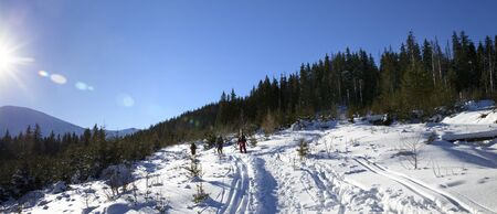 Freeriders with skis go on footpath in snow at sun winter day. Carpathian Mountains, Ukraine. Panoramic view.