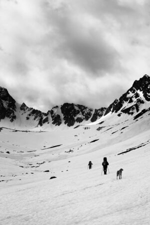 Two trekkers with dog on snowy plateau in high mountains and cloudy storm sky at gray day. Turkey, Kachkar Mountains, highest part of Pontic Mountains. Black and white toned landscape. High contrast.
