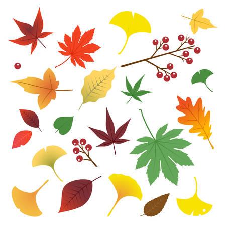 秋の紅葉  イラスト・ベクター素材