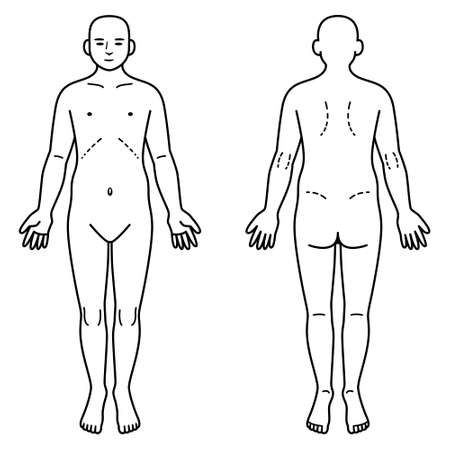 human: Human body front and back