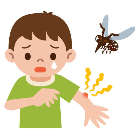 Boy was stabbed in the mosquito  イラスト・ベクター素材