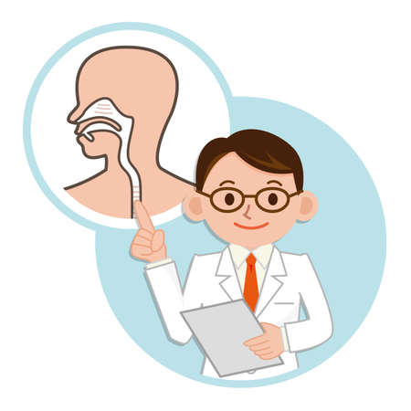 Doctor for a description of the pharynx Illustration