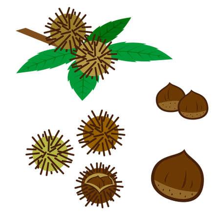Set of chestnuts