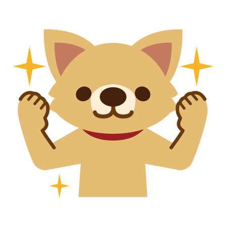 yell: Energetic dog that contains the yell