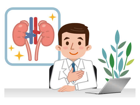 Doctor explaining the kidneys Ilustração Vetorial