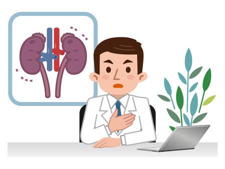 Medico che spiega il rene malato