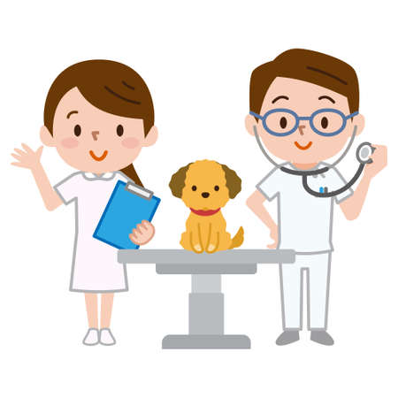 Veterinarians and a dog