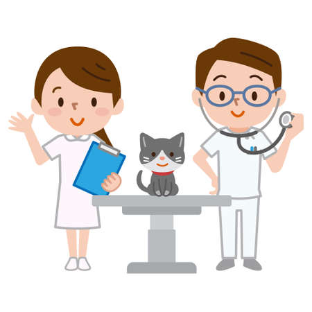 Veterinarians and a cat