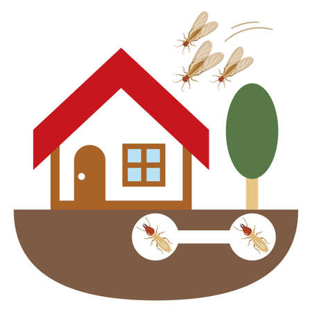 Illustration of a house invaded by termites
