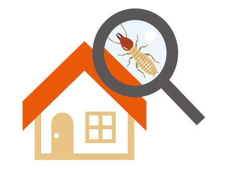 Termite Settled House and Loupe
