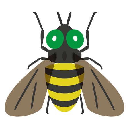 Illustration of botfly on white background.