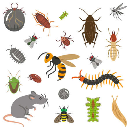 Set of pests and pests illustration 向量圖像