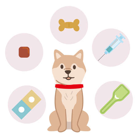 Preventive medical image of a dog on a white background