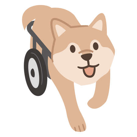 Illustration of a dog wheelchair on a white background
