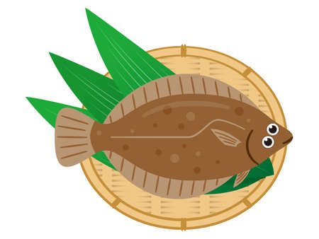 Simple illustration of fresh fish flatfish