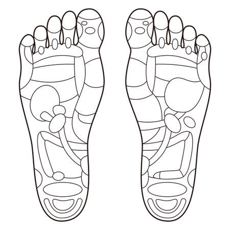 Reflexology foot massage points reflexology zones, massage signs and colored points Vector Illustration