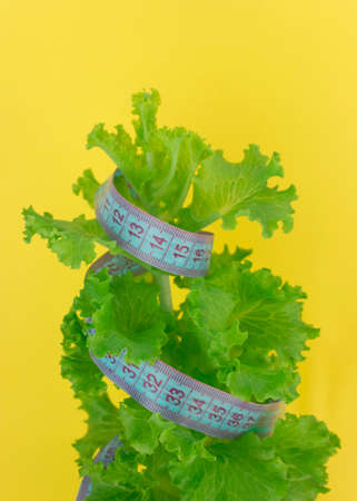 Diet concept - lettuce and measure tape.nutrition concept to reduce waist.quarantined weight loss. Stok Fotoğraf