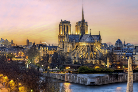 鳥の cathedrol ノートルダム ・ ド ・ パリのパリ、フランスの夕日