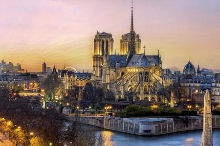 Vogelmening van de cathedrol Notre de zonsondergang van Parijs in Parijs, Frankrijk