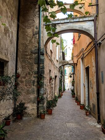 Typical Italian narrow street with small flower pots