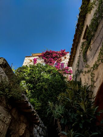 An Old Buildings stone walls covered in pink flowers and greenery, in Eze village, on French Riviera