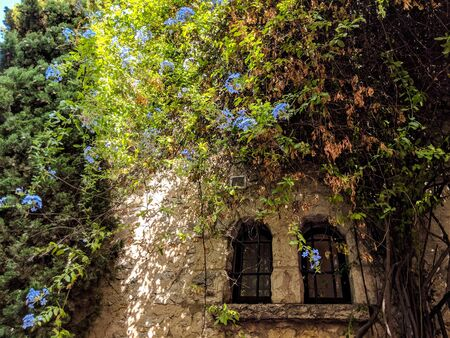 Small Stone house covered in greenery in Eze village, on French Riviera