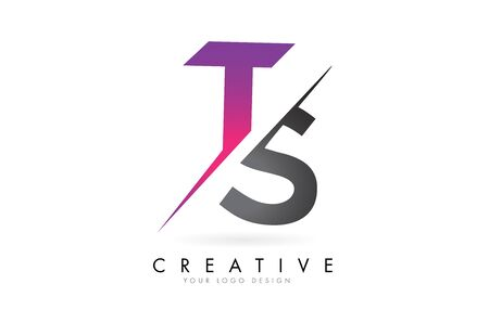 TS T S Letter Logo with Colorblock Design and Creative Cut. Creative logo design.