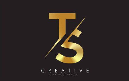 TS T S Golden Letter Logo Design with a Creative Cut. Creative logo design with Black Background.