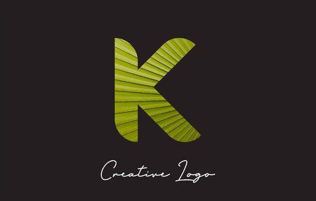 K Letter Logo with Palm Tree Leaf Pattern Design Vector Illustration.