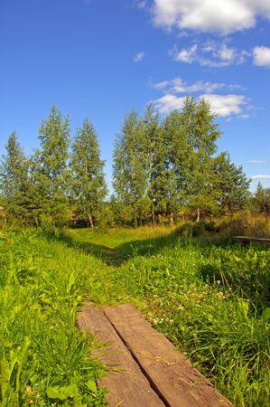 footpath   small wooden bridge in summer Stock Photo - 12959037