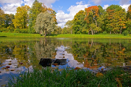 View on autumn landscape of river and trees in sunny day Stock Photo - 15481398