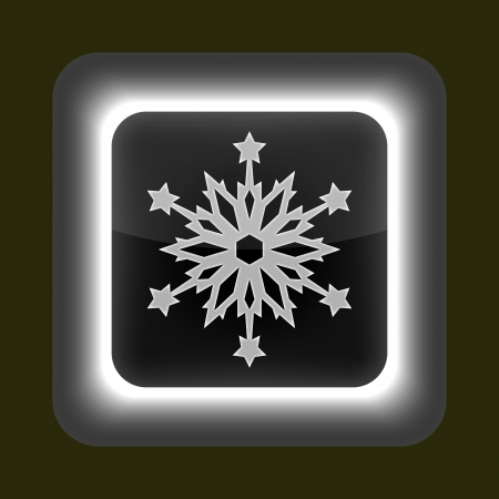 Gray glossy web button with sign snowflake symbol  Rounded square shape on gray background  Stock Vector - 15934919