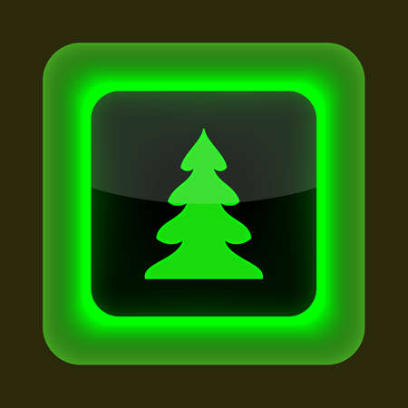 inet: Green glossy web button with sign christmas tree symbol  Rounded square shape on gray background  10 EPS