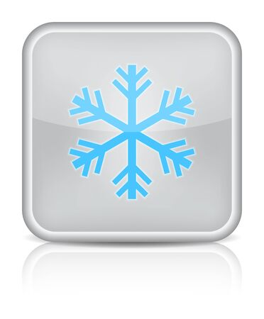 inet: Gray glossy web button with sign snowflake symbol  Rounded square shape on white background   Illustration