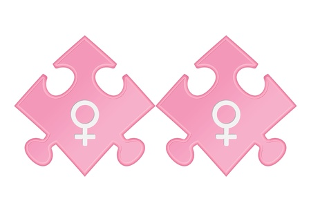 Lesbian symbols  Vector illustration Stock Vector - 17597661