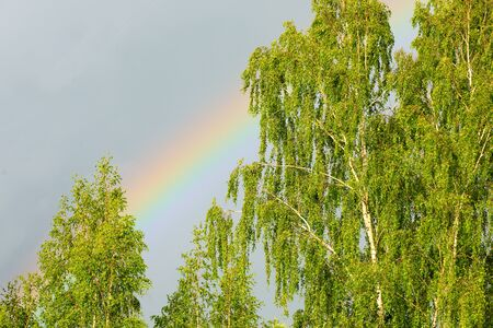 Rainbow after an afternoon thundershower