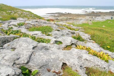 Grikes and clints along the limestone pavement in the Burren, the karst-landscape region in west County Clare, Ireland.