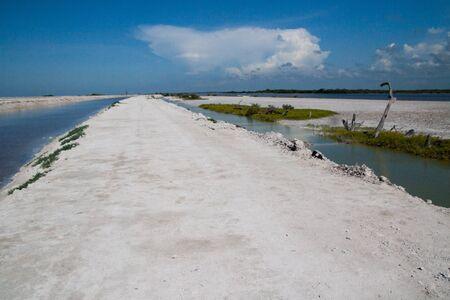 biosphere: El Cuyo Yucatan, Ria Lagartos Biosphere Reserve, Yucatan, Mexico