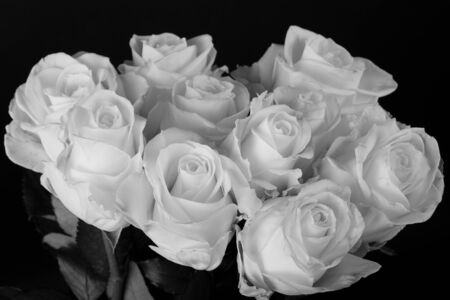 Black and white image of a bouquet of roses photo